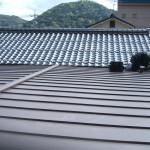 立平葺(ハゼ式)GLカラー鋼板