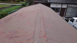 経年劣化した波板屋根